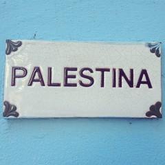 #Palestina #Palestine #PalestinaLibre #FreePalestine