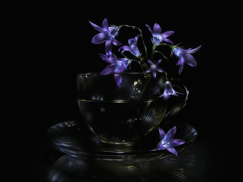 Still life light painting picture: bouquet of bluebell flowers in transparent glass cup, glowing on black background