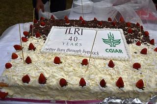 ILRI@40 Cake