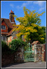 Cathedral Close, Salisbury