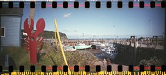 bay of fundy - august 2014