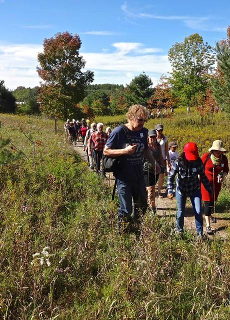 purple-woods-conservation-area-trail