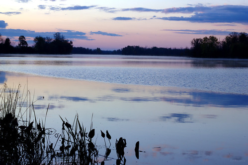 pink sky ontario canada reflection water river dawn twilight country mississippiriver bluehour wilderness almonte flickrfriday mississippimills