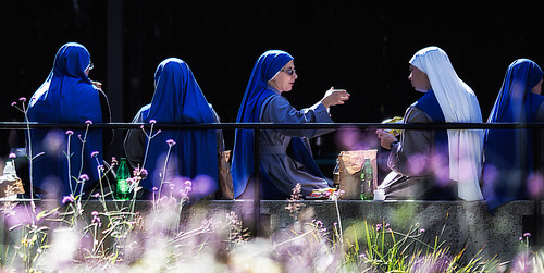 Nuns in Blue, Lunch at Zoo