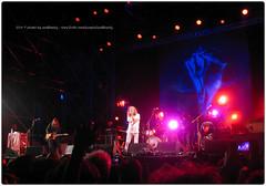 Concerti / Live Music - 2014