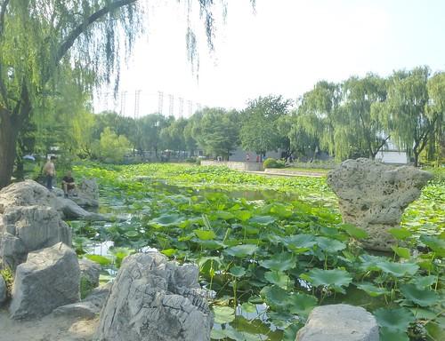 Beijing-Parc Longtan (32)