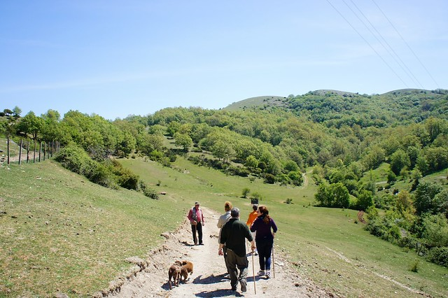 truffle-hunt-patrico-umbria-italy-cr-brian-dore