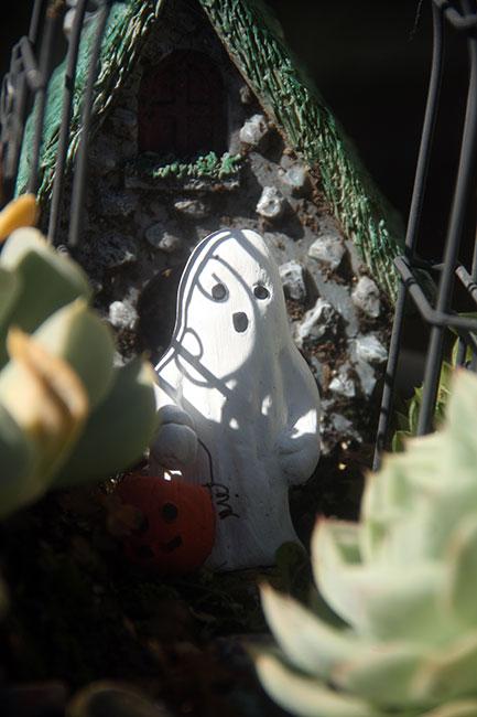 Fairy-Garden-Ghost