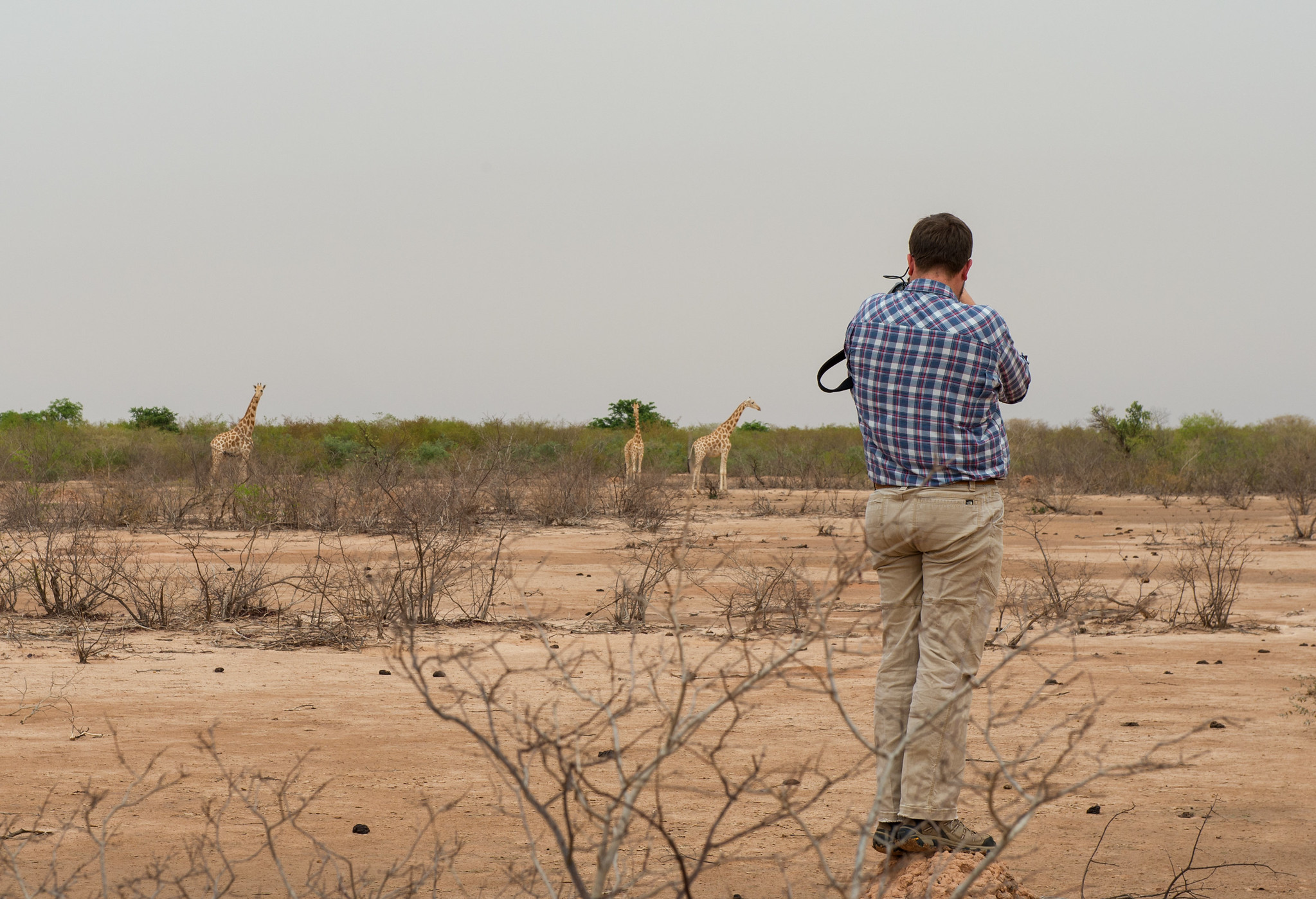 Capturing photos of the Last Herd