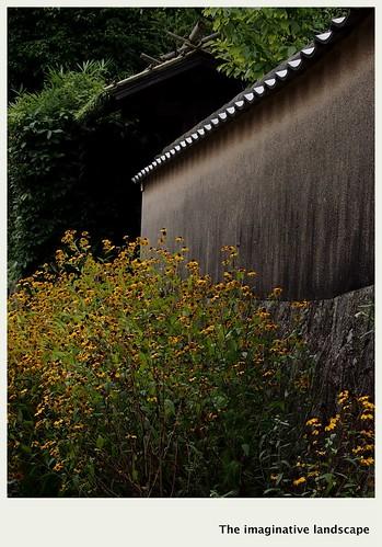 flower nature japan nara yamato 奈良 大和 佐紀路 olympuspenep3 ealabo theimaginativelandscape fuwaryôsuke