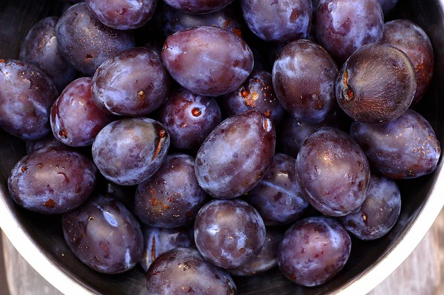 Plums for Cardamom Sour Cream Plum Muffins by Eve Fox, the Garden of Eating, copyright 2014