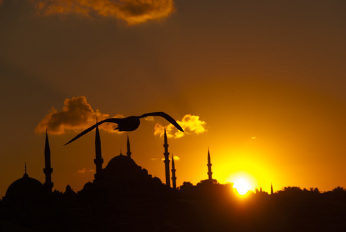 sunset shadow cloud bird beauty turkey gold asia muslim istanbul mosque human ottoman byzantion