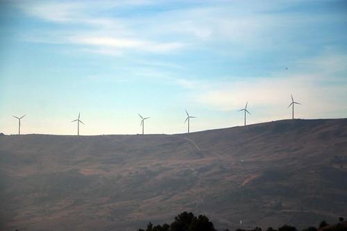 Sicilia: una fila di pale eoliche
