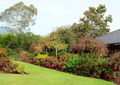 Singleton Botanical Gardens - Autumn 2014