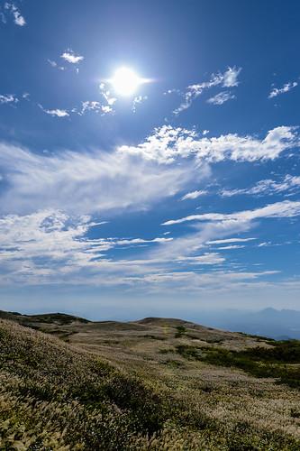 sky mountain flower 日本 山 空 三瓶山 sanbesan ススキ 草花 山岳 島根県 風景landscape 大田市 山頂からの眺望
