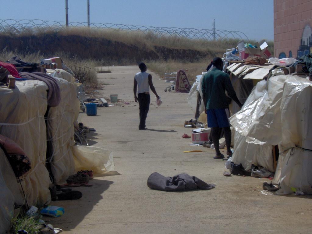 Inmigrantes accampada (4)