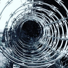 Ever feel like life is one endless spiral? #phonephotography #spiral #fence #shotbypixel #life #insideooutside #outdoorphotography #outdoors #jumpingthefence #jemthecrow
