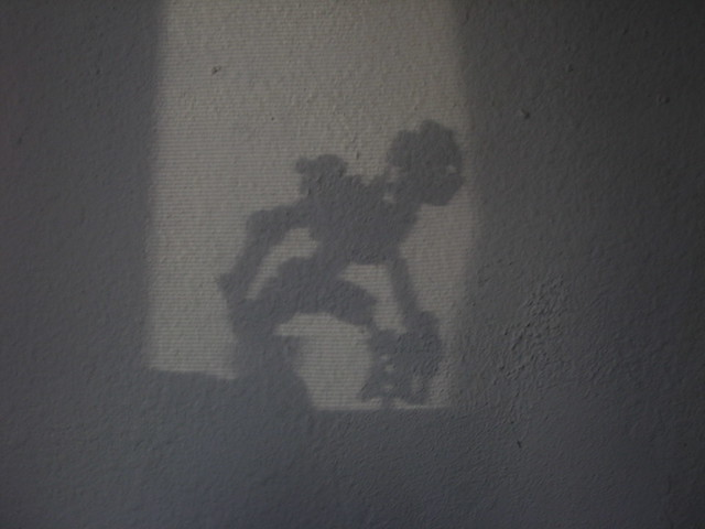 The Shadow of Flame, Canon POWERSHOT SD1000