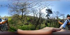 Kew Gardens 360