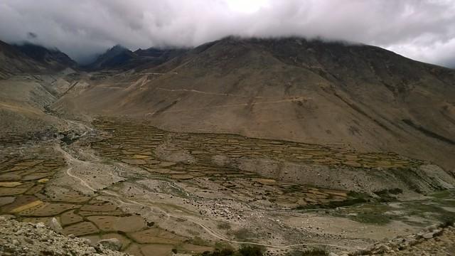 Lalung La Pass cultivation