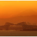 Fuji Golden Sunset 4268 by kbaranowski