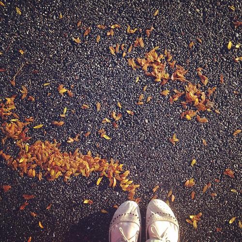 Fall love.