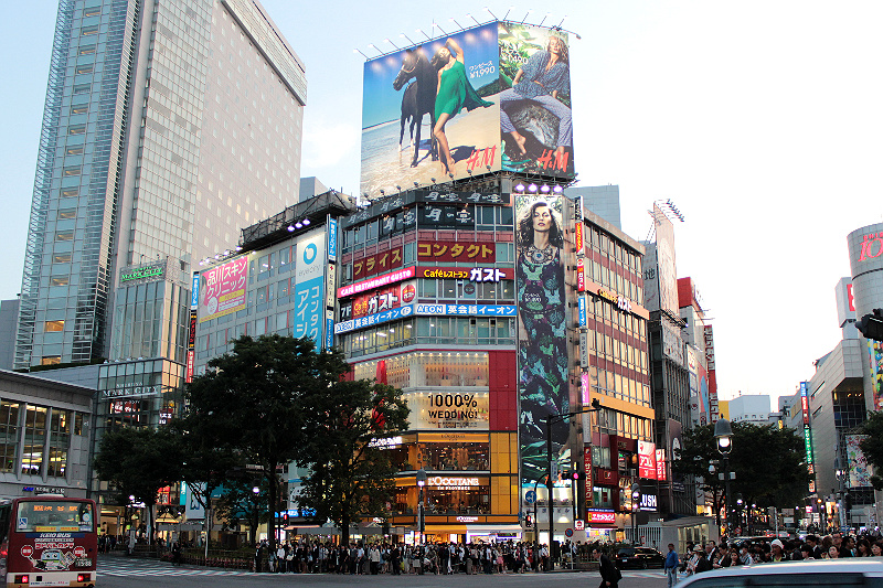 Shibuya Crossing Japan Day