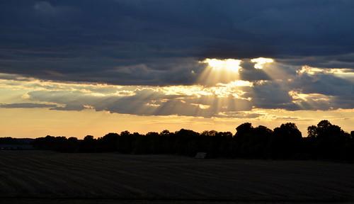 trees light sunset shadow summer sky sun field clouds photography photo photos poland polska end rays landspace lato