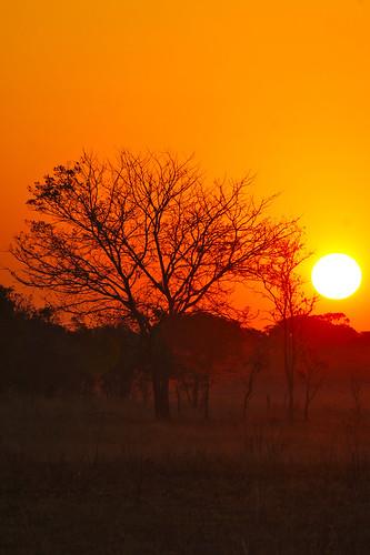sunset zambia kafue