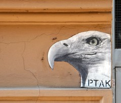 Special : Liska & PTAK
