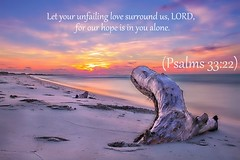Psalm 33:22 nlt