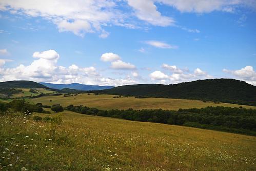 county summer nature sunshine forest landscape hungary magyar magyarorszag nograd northhungary