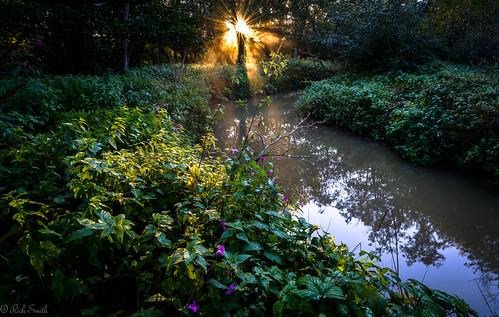sun mist water sunrise river nikon rays isle f28 knighton wight d800 undergrowth alverstone 1424mm