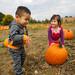 Pumpkin Picking-61