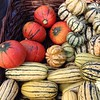 The pumpkin before the soup #fall #market