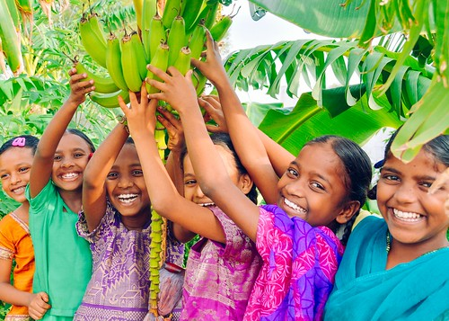 India Girls Home bolstered by banana grove, farmland, and new garden projects