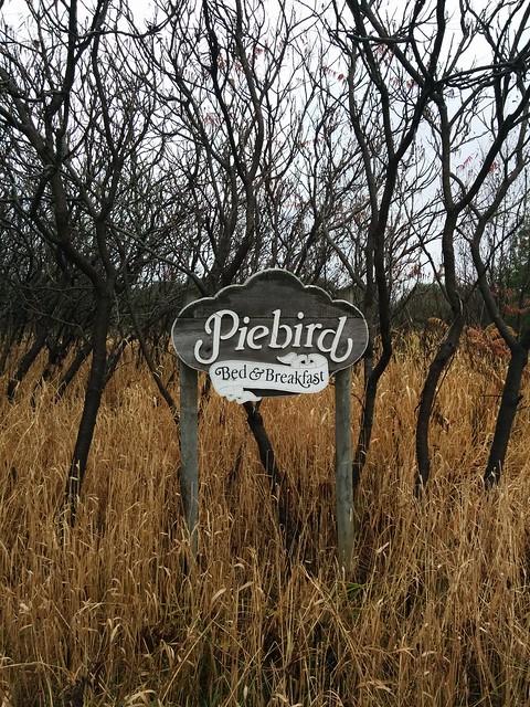 Piebird