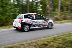 Rallye de France - Alsace 2014