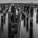 The Black and White Beauty of Princes Pier