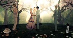 ~The Vows~