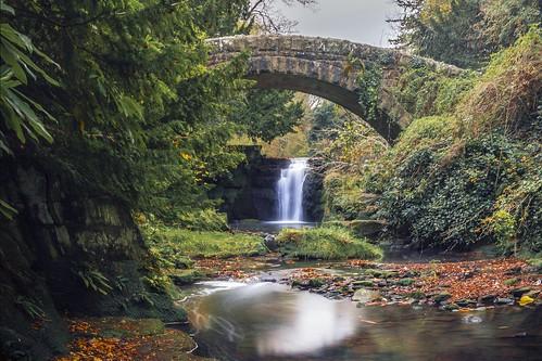 Autumn at Jesmond Dene Waterfall
