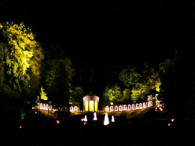 Goldengelchen Lichterfest Forstgarten01