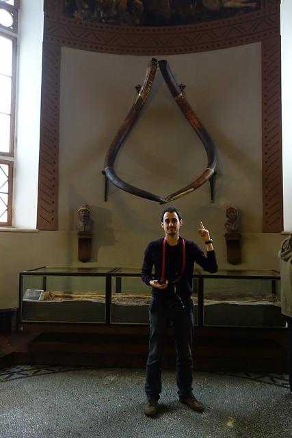 641 - Museo histórico