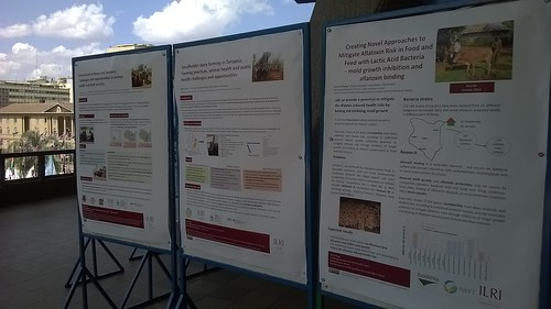Posters by projects in ILRI's Food Safety and Zoonoses program featured at the 6th All Africa Conference on Animal Agriculture