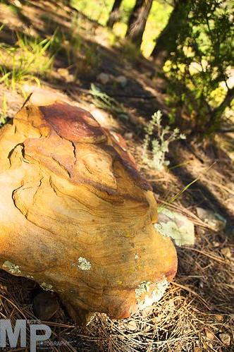 camping arizona lake fishing crawfish az adventure campfire trout chevelon
