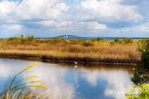birds clouds landscape south alabama scenic dauphinisland escc nikond700 camerasouth debbiegodard