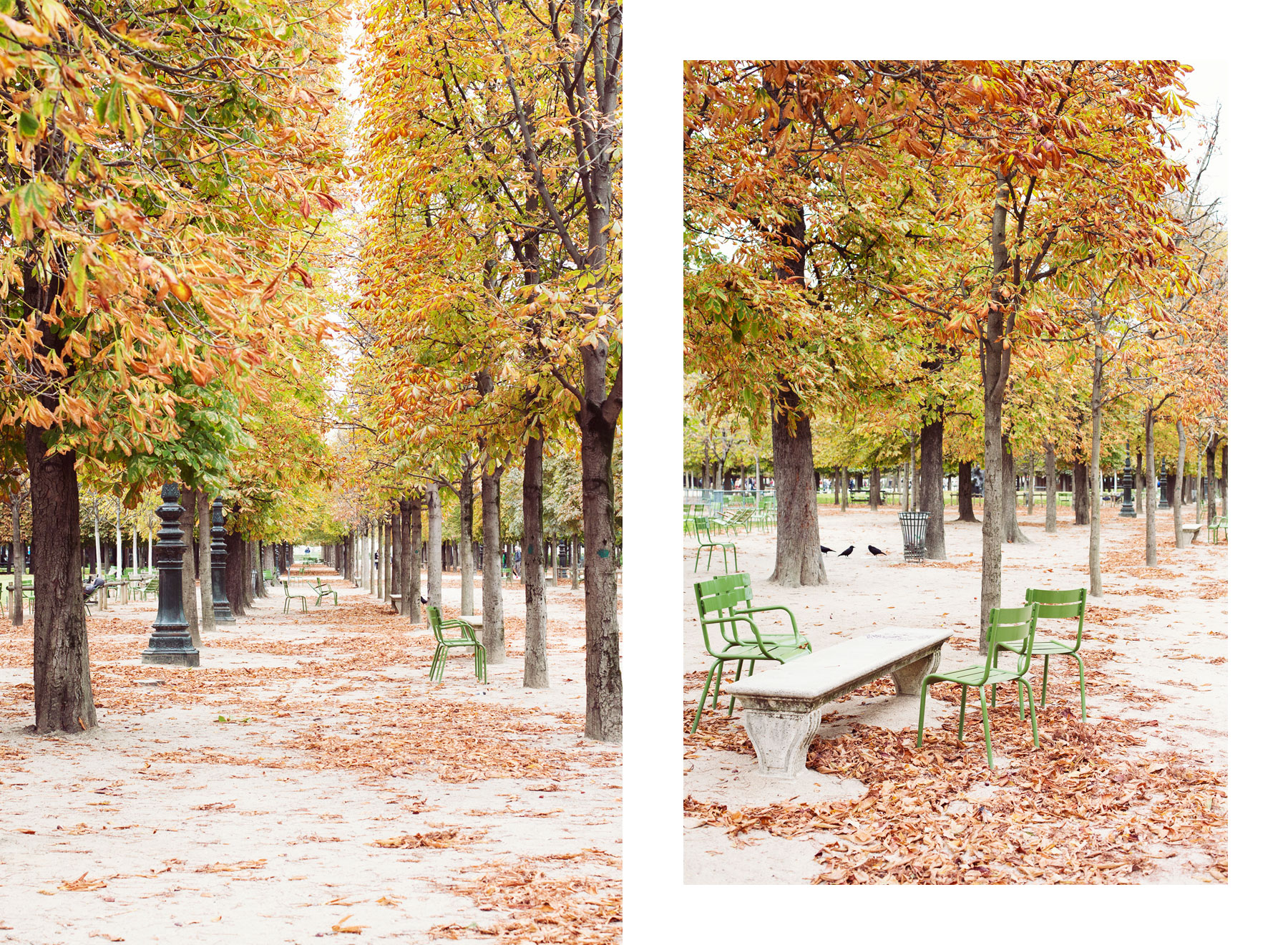 Autumn in Paris by Carin Olsson (Paris in Four Months)