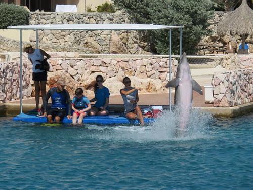 Fotografin, Therapeut, Saskia, Praktikantin, Delphintrainerin