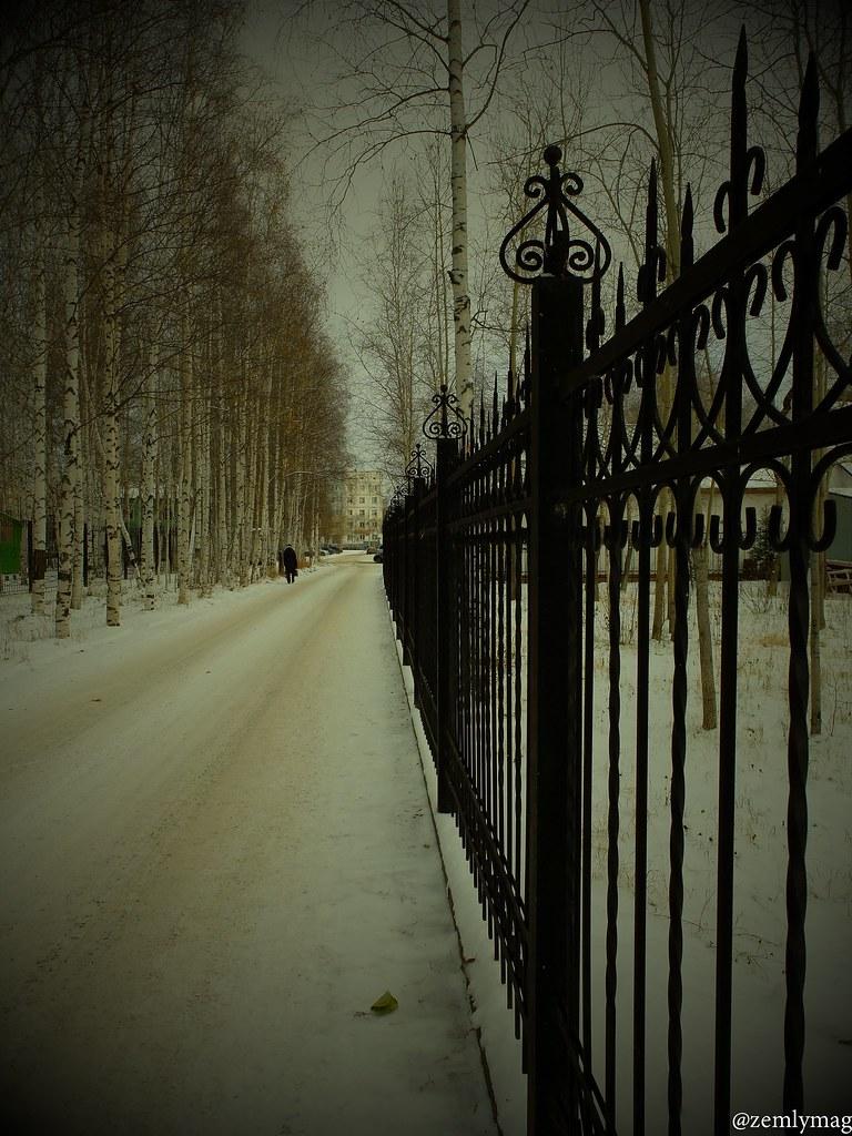 sur_1vkr_zima-3