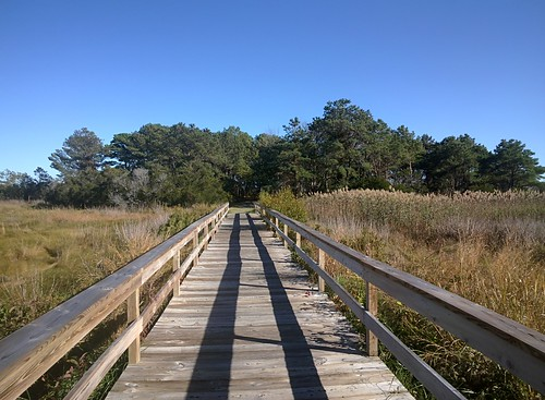 Marsh Trail, Chincoteague National Wildlife Refuge